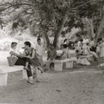 Sosuans enjoying the shade