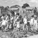 School children learning farming chores (1940s)