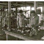 Dr. Kohn inspecting meat in Ganadera (middle) with unknown workers